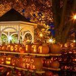 Now That's A Pumpkin Festival!