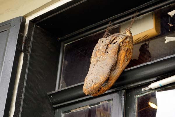 Alligator Above Door