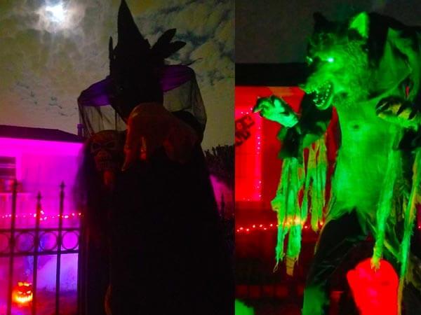 Witch vs Werewolf